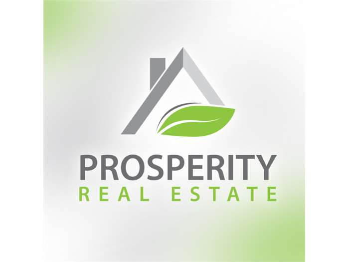 Prosperity real estate Branding