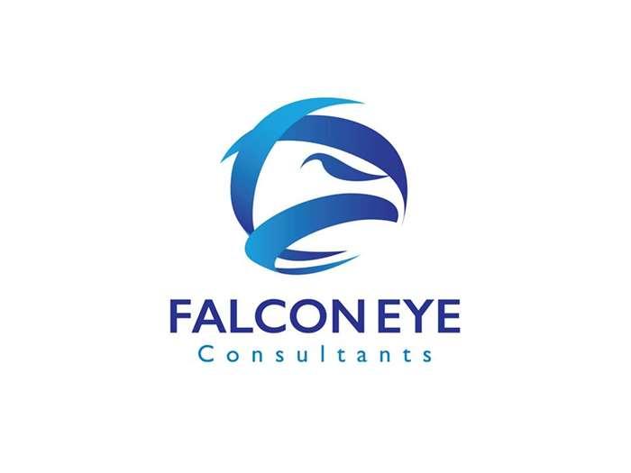 FalconEye Consultants Brand Identity & Logo Design